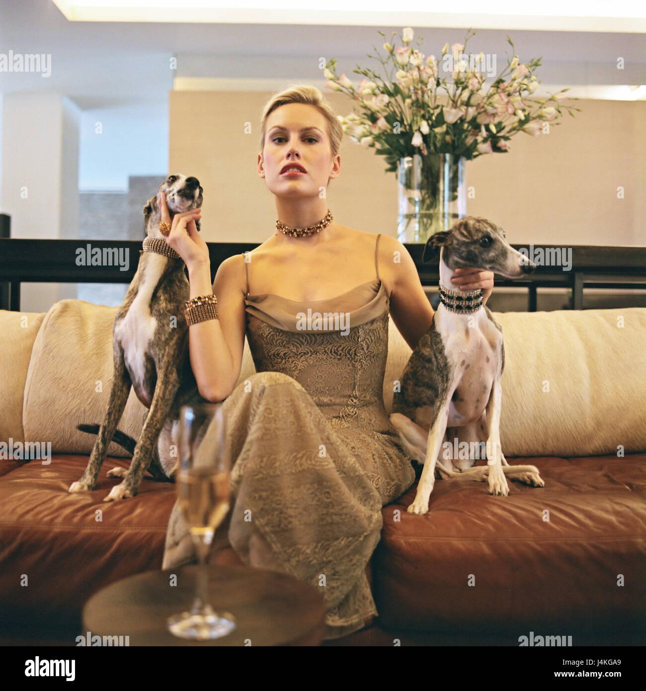 Wealth Lifestyle Dog Stock Photos Amp Wealth Lifestyle Dog