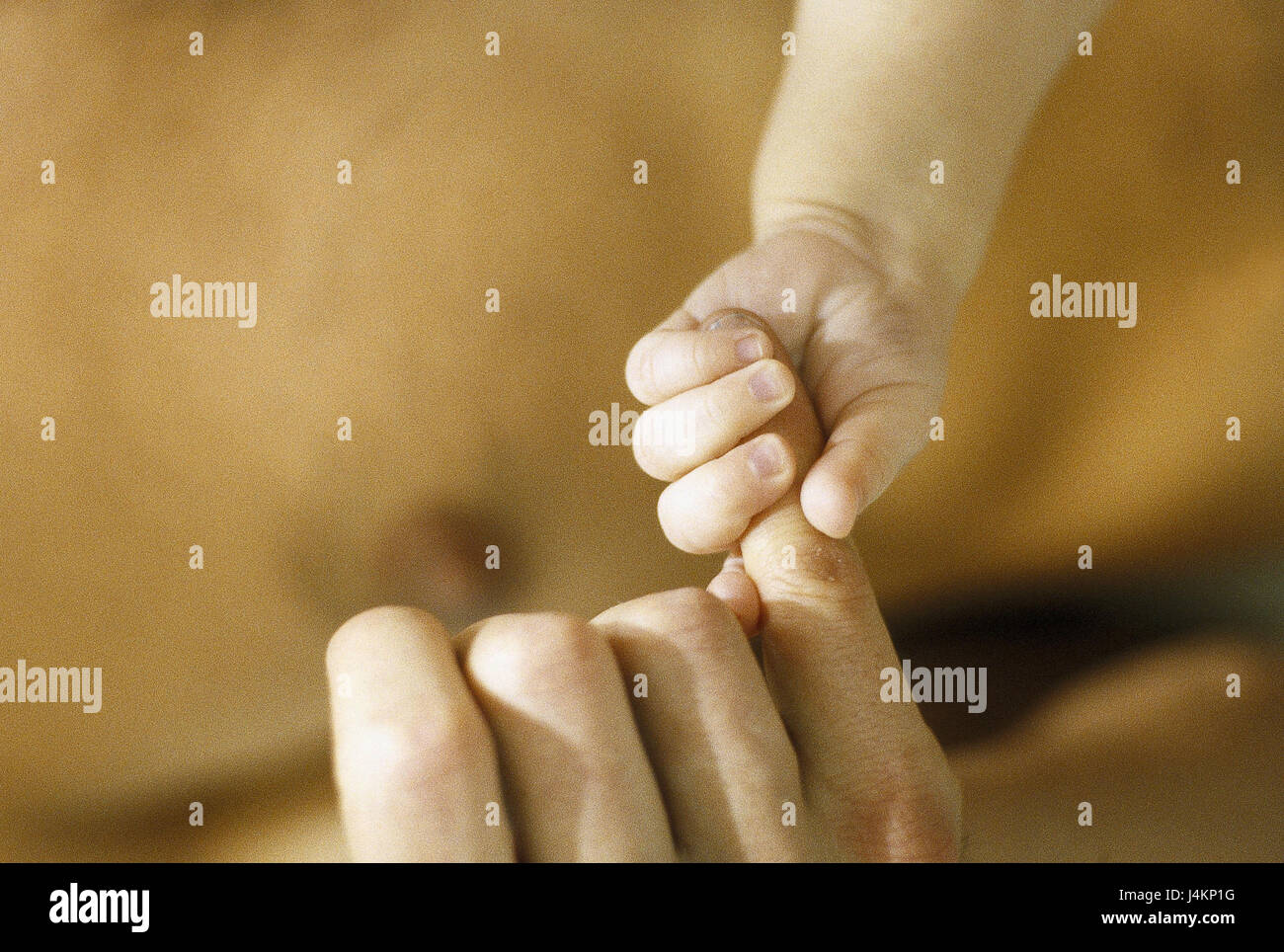 Father, baby, detail, hands, touch very closely, man, upper part of the body freely, shell, child, finger, give - Stock Image