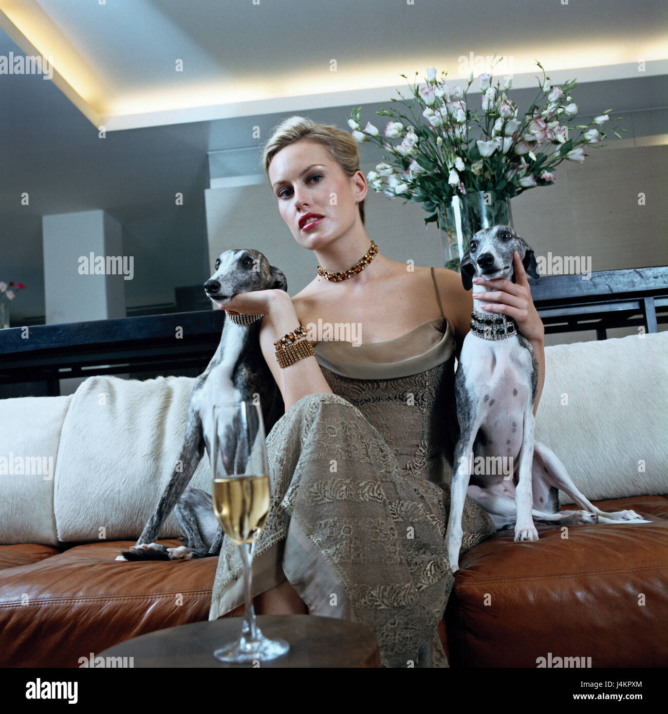 Living square, couch, woman, elegantly, dogs, whippets, stroke sitting room, festively, evening dress, Sparkling - Stock Image