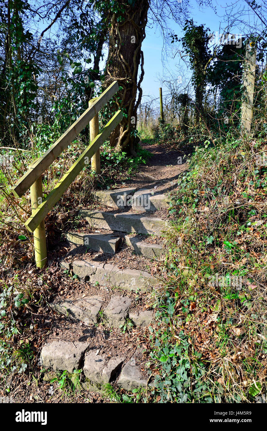 Rural steps in the countryside with wooden handrail. Boughton Monchelsea Village, Kent, England - Stock Image