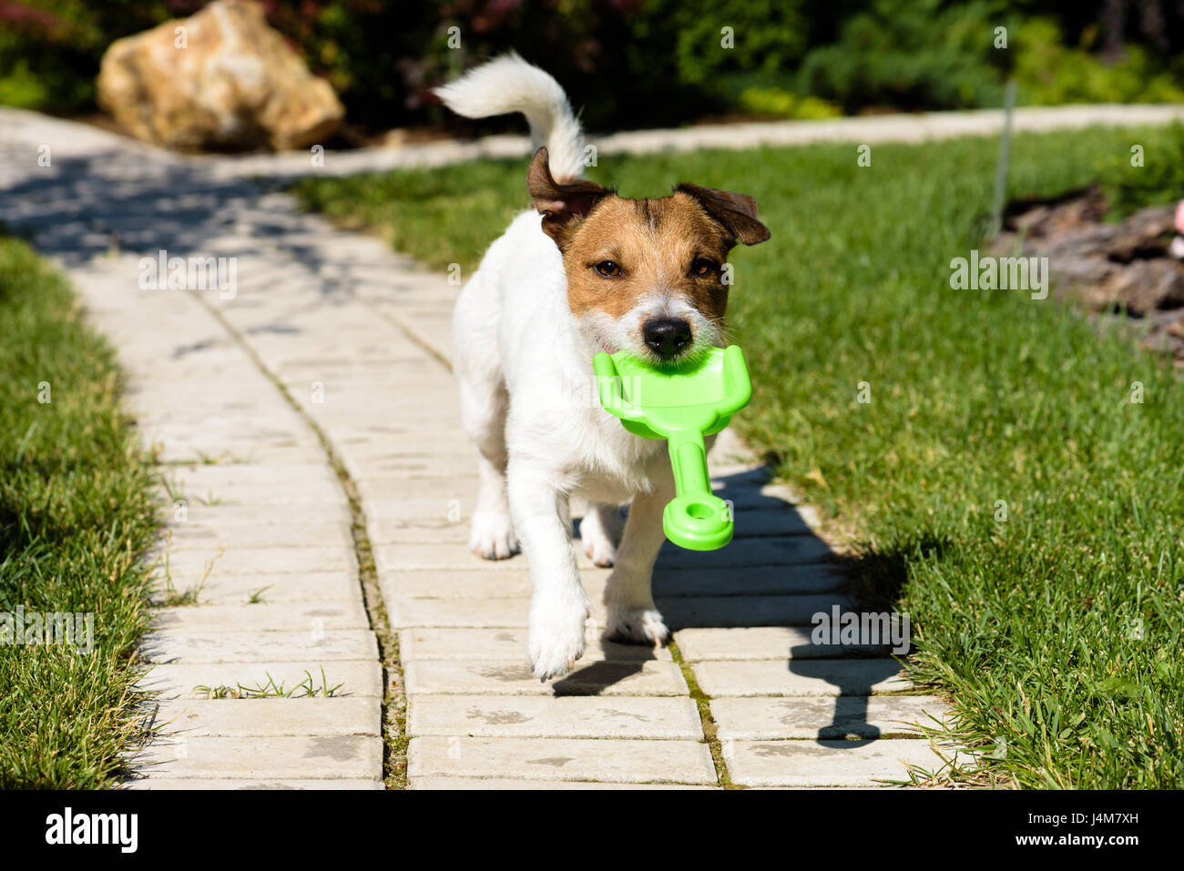 Funny gardener with shovel inviting you to work at summer garden - Stock Image