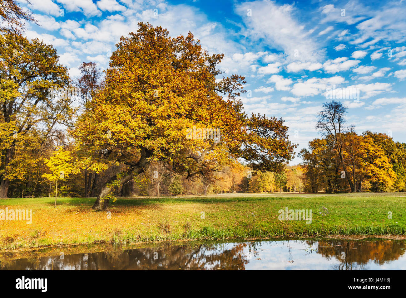 Fuerst Pueckler Park in Bad Muskau in autumn. Since 2004, the park belongs to the UNESCO World Heritage Site, Saxony, - Stock Image