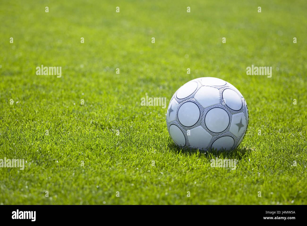 Turfs, football ball, sports device, leather ball ball, black-and-white, ball game, leather ball football, sport, - Stock Image