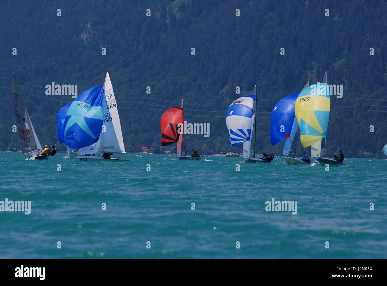 Regatta, sailboats, spinnakers, Germany, Bavaria, Walchensee, lake, boats, ships, sailing ships, sailings, sport, - Stock Image