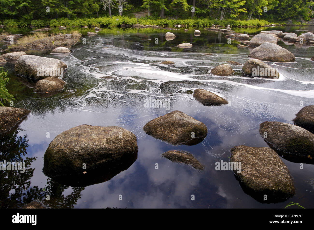 Flux, bile lump, Mersey River, million cases, Kejimkujik Nationwide park, Nova Scotia, Canada, - Stock Image
