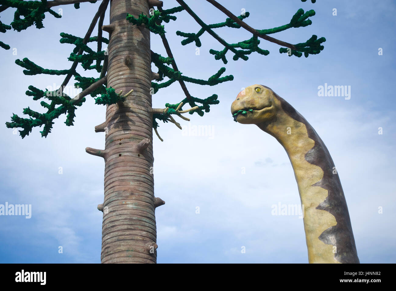 Replica of sauropod camarasaurus eating leafs of araucaria conifer tree near IGEA village, La Rioja, Spain. sauropoda Stock Photo
