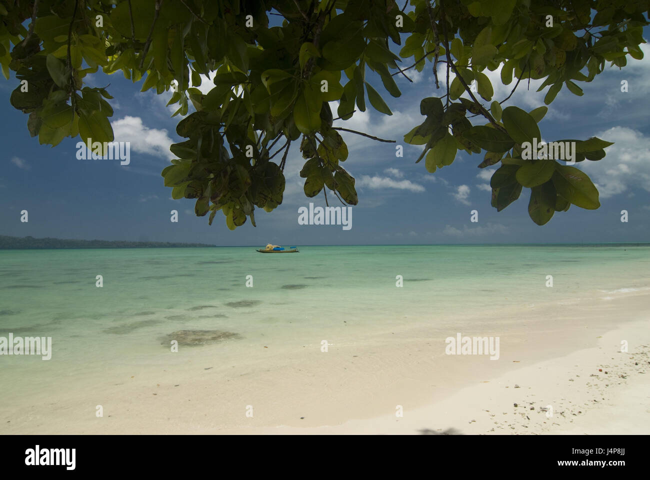 Sandy beach, turquoise-blue, Indian ocean, Havelock Insel, Andamanen, India, - Stock Image