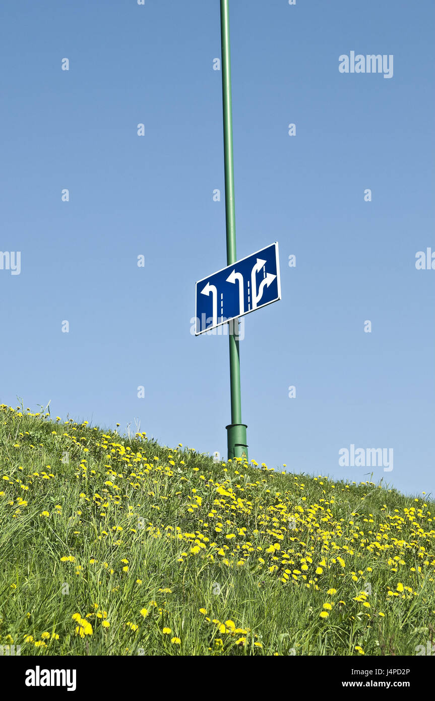 Traffic signs, direction indicators, dandelion meadow, spring, - Stock Image