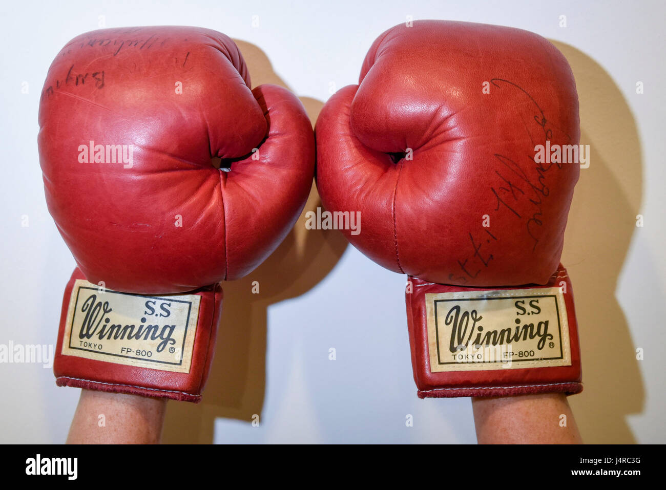 London, UK.  14 May 2017.  A pair of boxing gloves worn and signed by Muhammad Ali in the World Heavyweight Championship - Stock Image