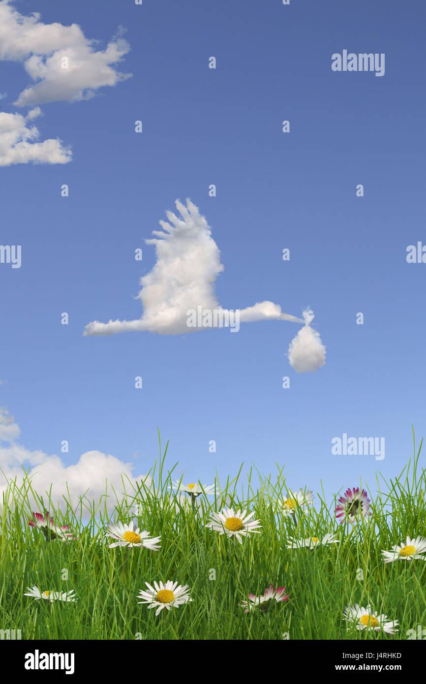 Heaven, clouds, character, stork, nappy, baby, flower meadow Stock ...