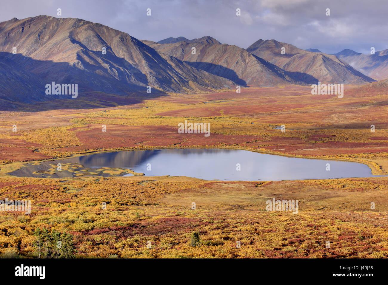 North America, Canada, Yukon territory, Yukon Territory, Dempster highway, Ogilvie Mountains, Tombstone Territorial - Stock Image