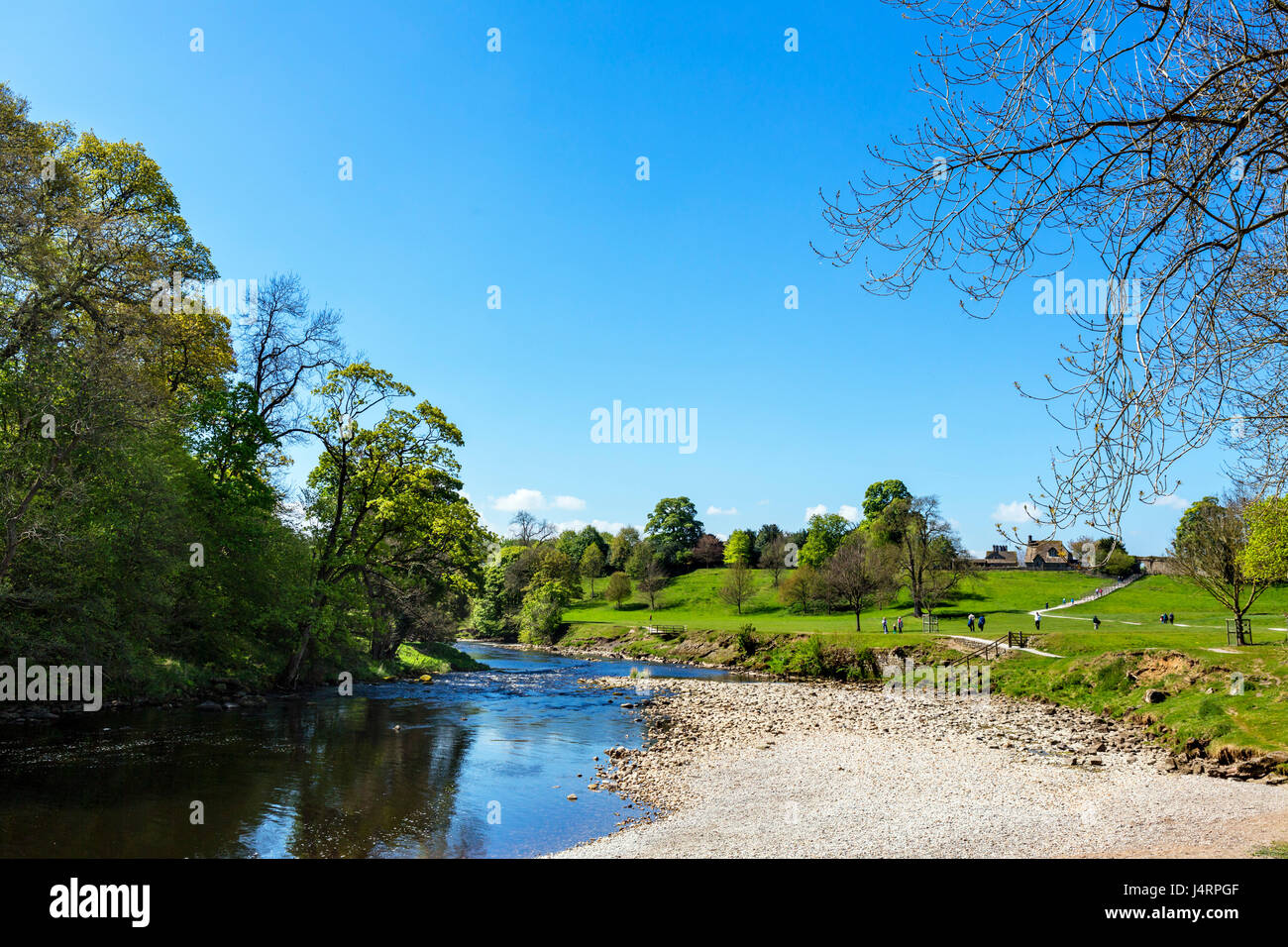 River Wharfe at Bolton Priory, Bolton Abbey, Yorkshire Dales National Park, North Yorkshire, England, UK - Stock Image