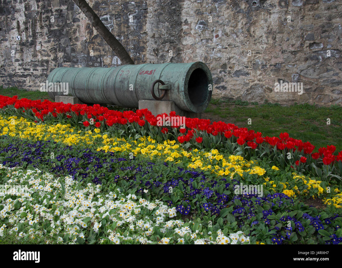 Ottoman Cannon Stock Photos Ottoman Cannon Stock Images Page 2