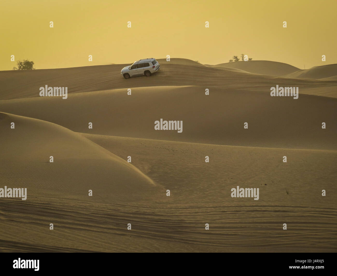desert safari, dune bashing in a 4 wheel drive Stock Photo