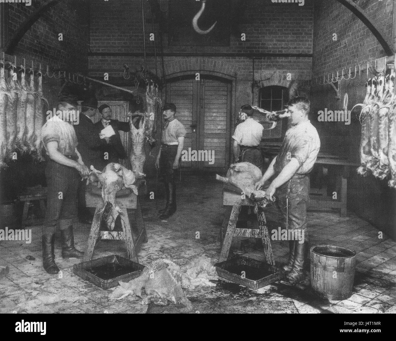 Zentralviehhof Berlin   Kammer im Hammel  und Kleintier Schlachthaus, um 1897 Stock Photo