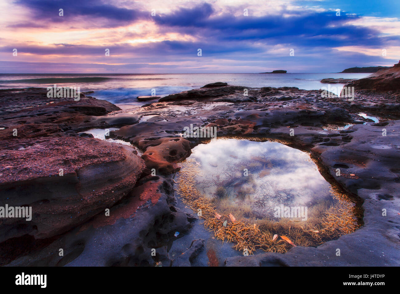 Cloudy sunrise over South Durral rocky sea head at low tide when saltwtter puddles hold water and seaweeds. - Stock Image