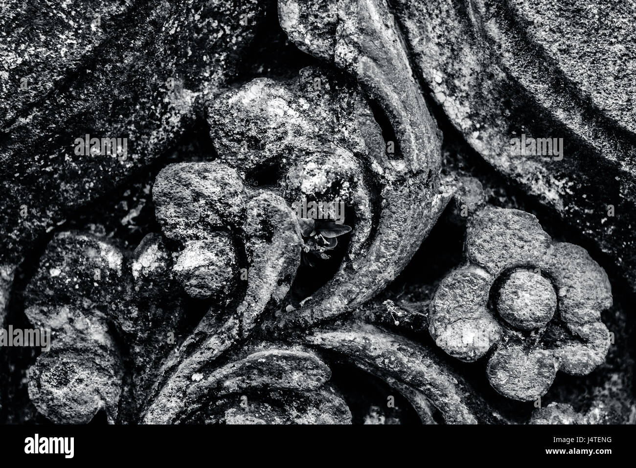 vintage stone curve design as background & texture. - Stock Image