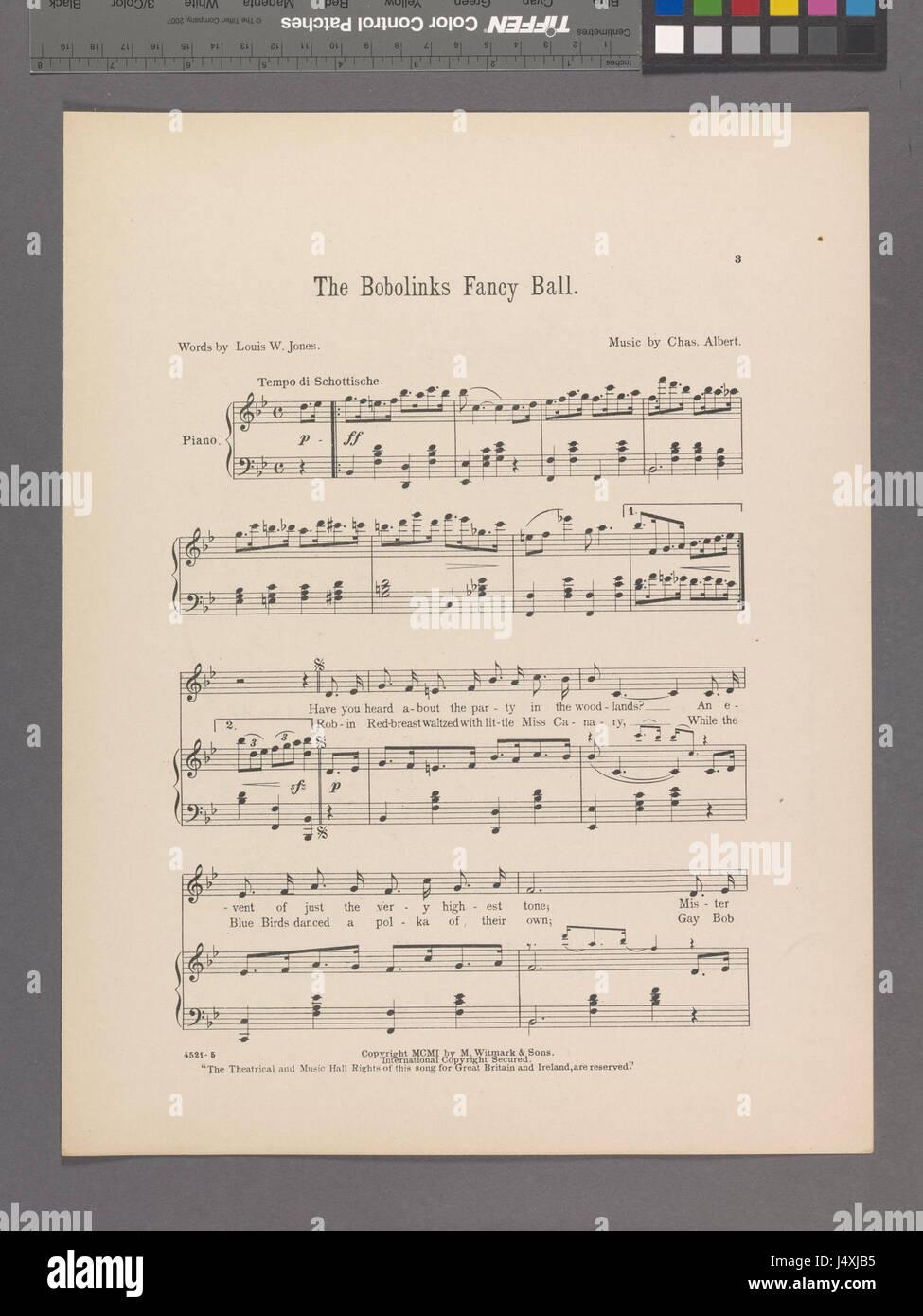 The bobolinks fancy ball (NYPL Hades 1924973 1953240) - Stock Image