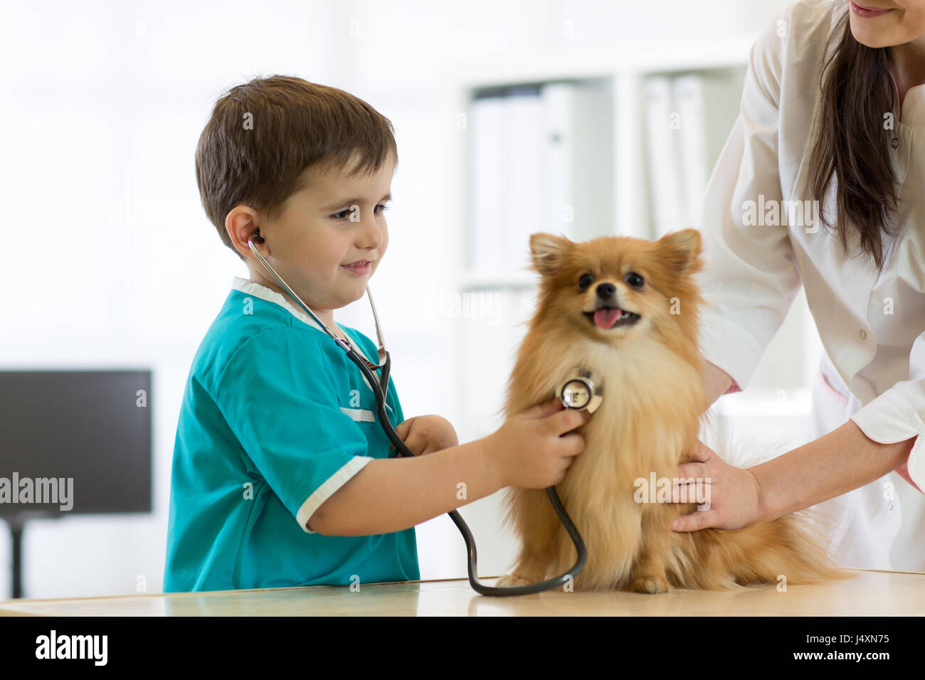 Boy at the veterinary doctor with his dog - Stock Image