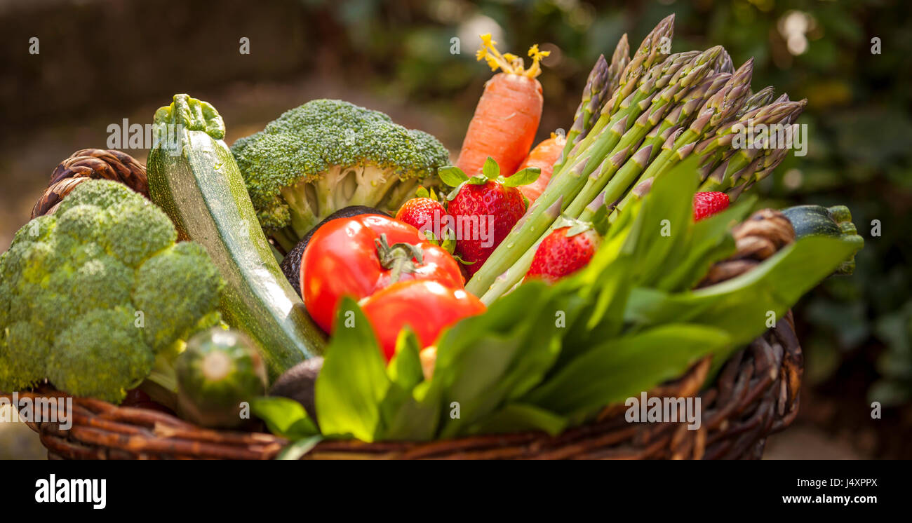 Fresh mixture Vegetables Basked on the Garden Background - Stock Image