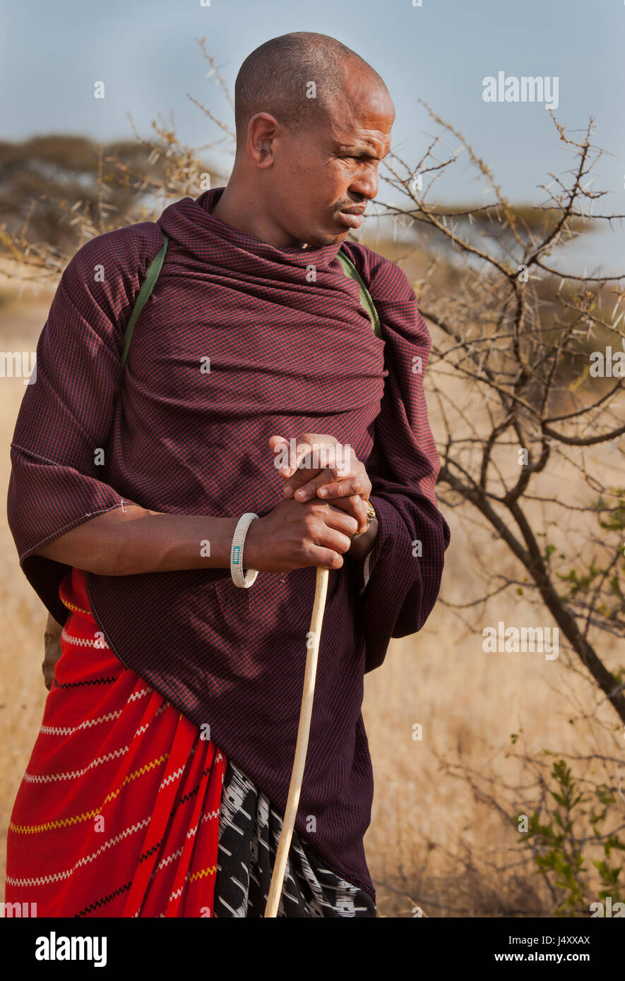 Massai Man in traditional clothing in Kilimajaro, Tanzania - Stock Image