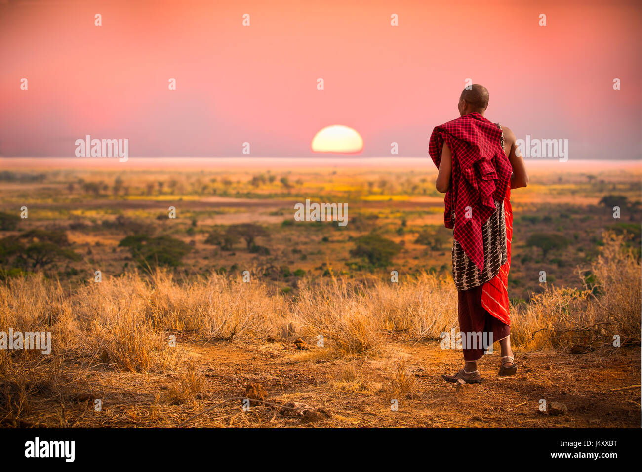 Massai man, wearing traditional blankets, overlooks Serengetti in Tanzania-Edit - Stock Image
