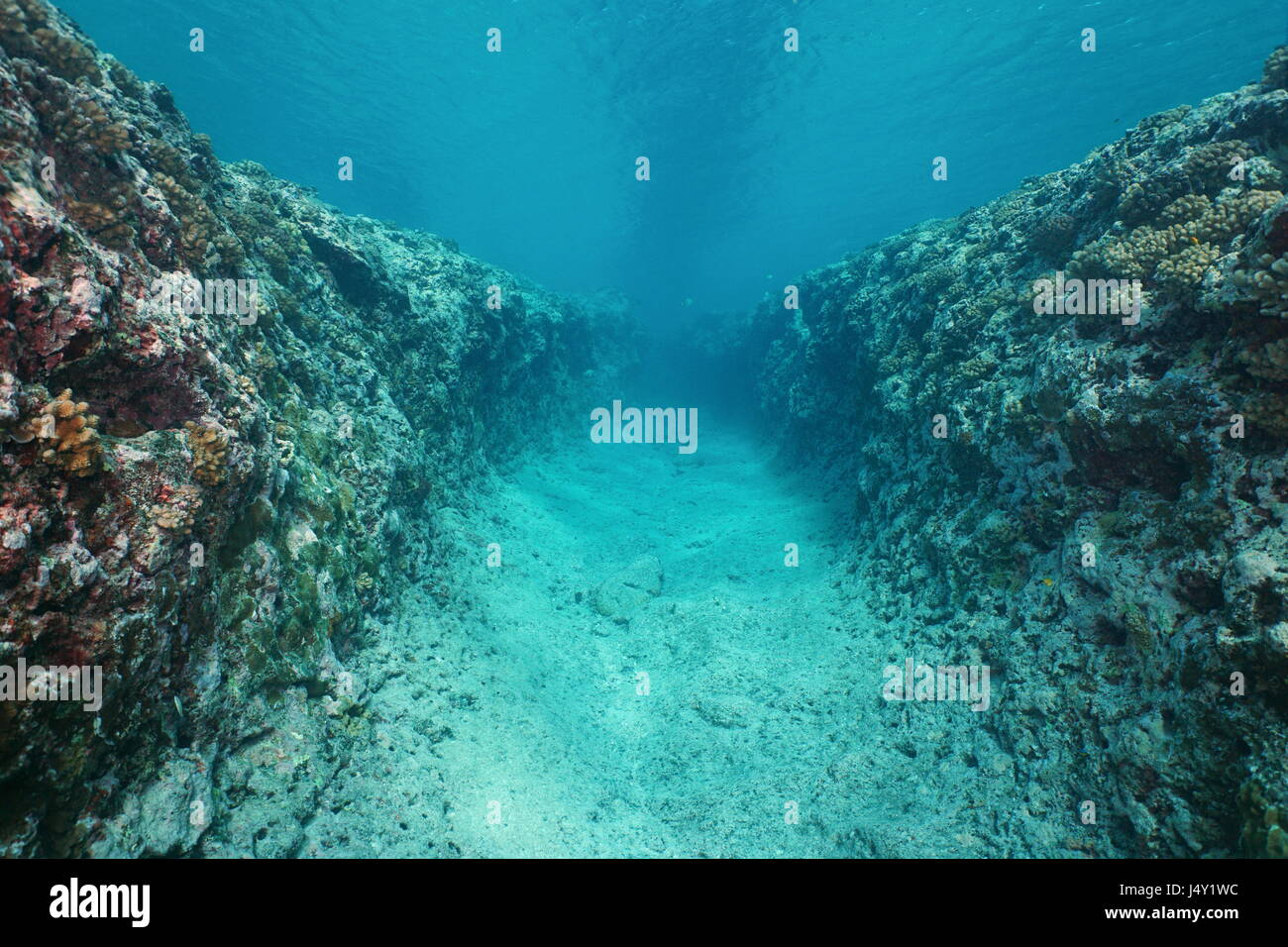 Natural trench underwater carved into the ocean floor on the outer reef of Huahine island, Pacific ocean, French - Stock Image