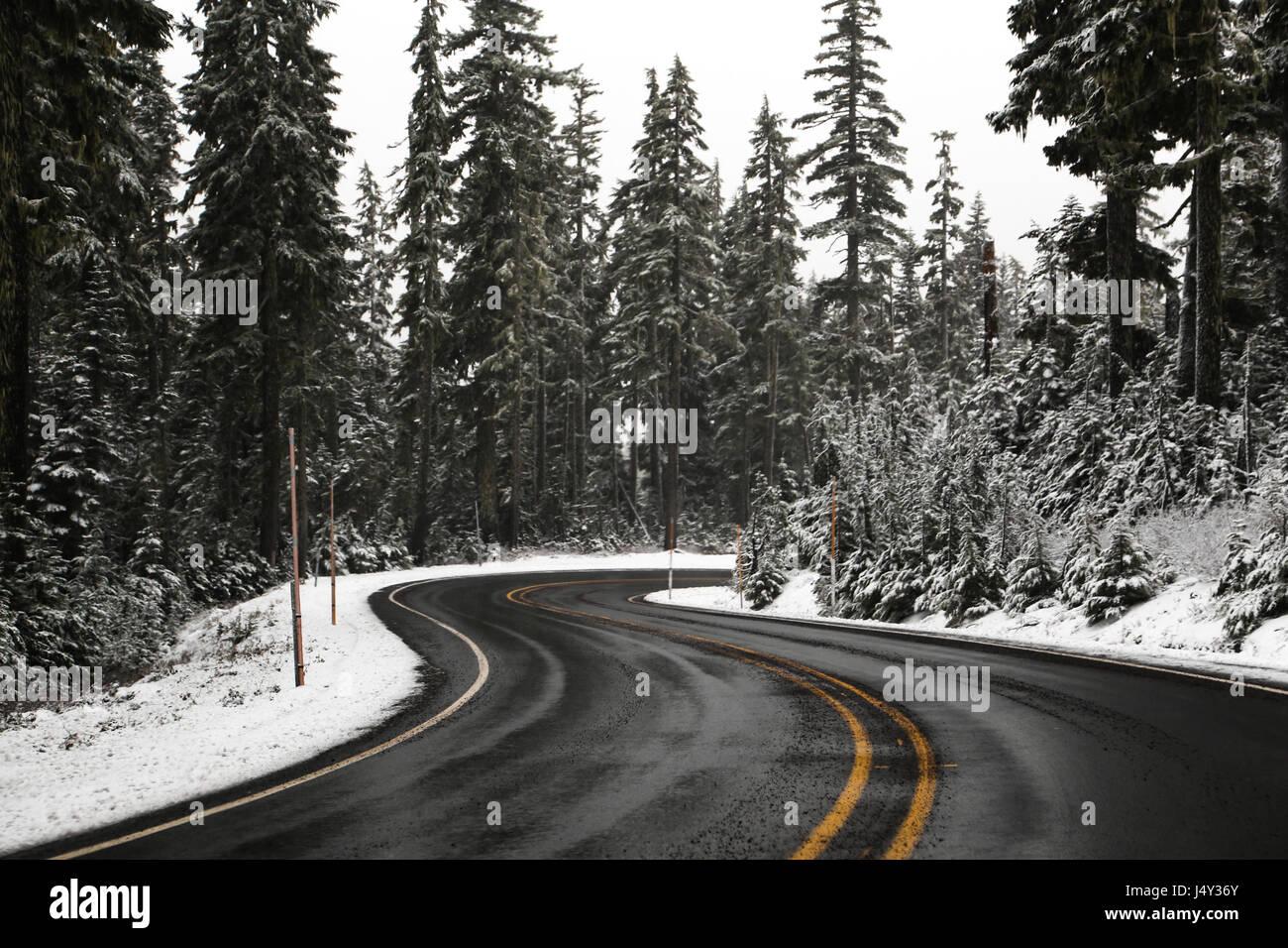 A twisty road on Mount Hood in Oregon. - Stock Image