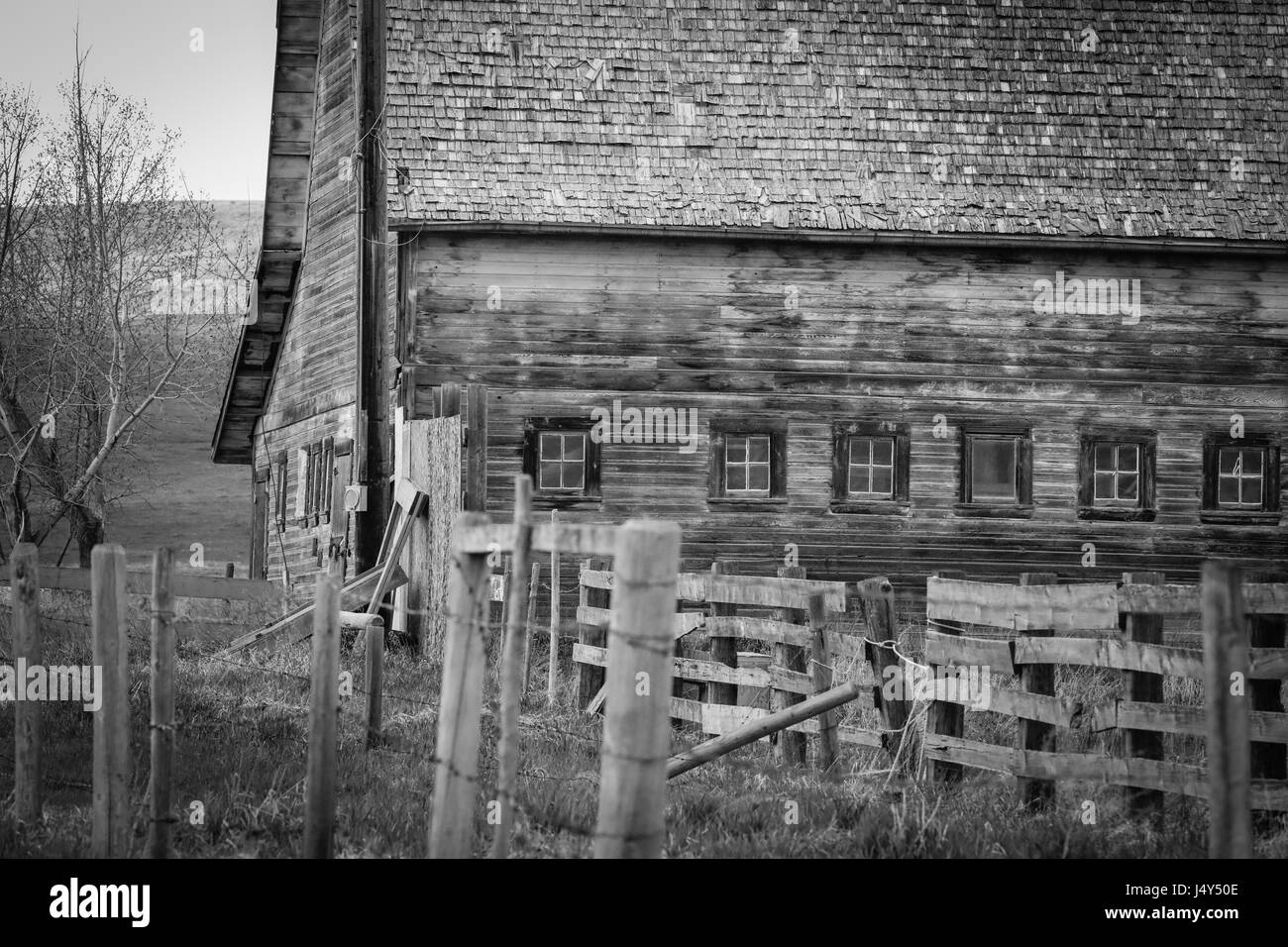 Old Barn on the Prairies - Stock Image