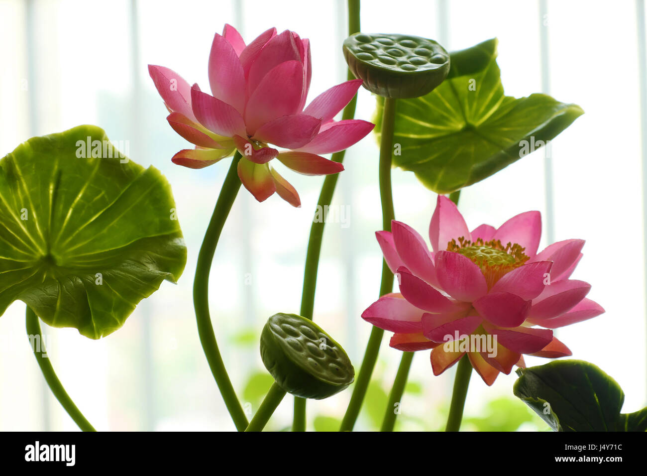 Art and craft product from craftsmanship pink lotus flower pot from art and craft product from craftsmanship pink lotus flower pot from clay art beautiful handmade for decoration mightylinksfo
