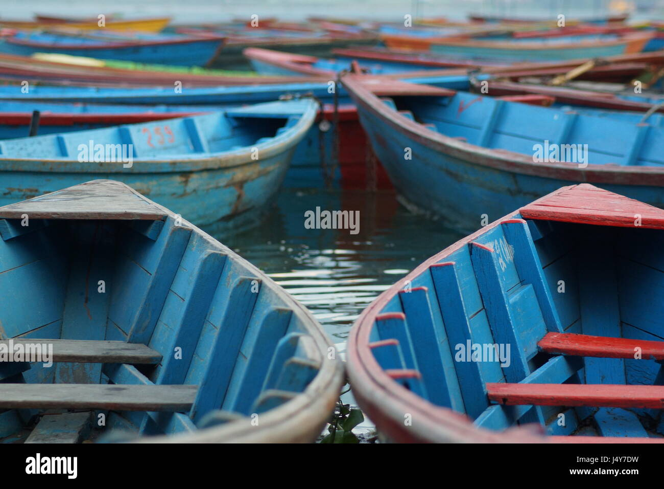 Colourful boats on Phewa Lake in Pokhara, Nepal Stock Photo