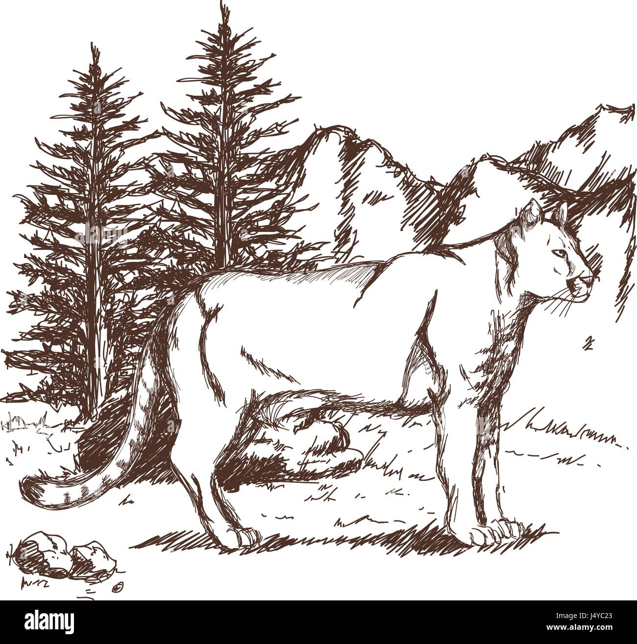 Landscape Mountain Sketch High Resolution Stock Photography And Images Alamy Capitals matter in the commands also important: https www alamy com stock photo hand drawn cougar or mountain lion landscape animal sketch wildlife 140743739 html