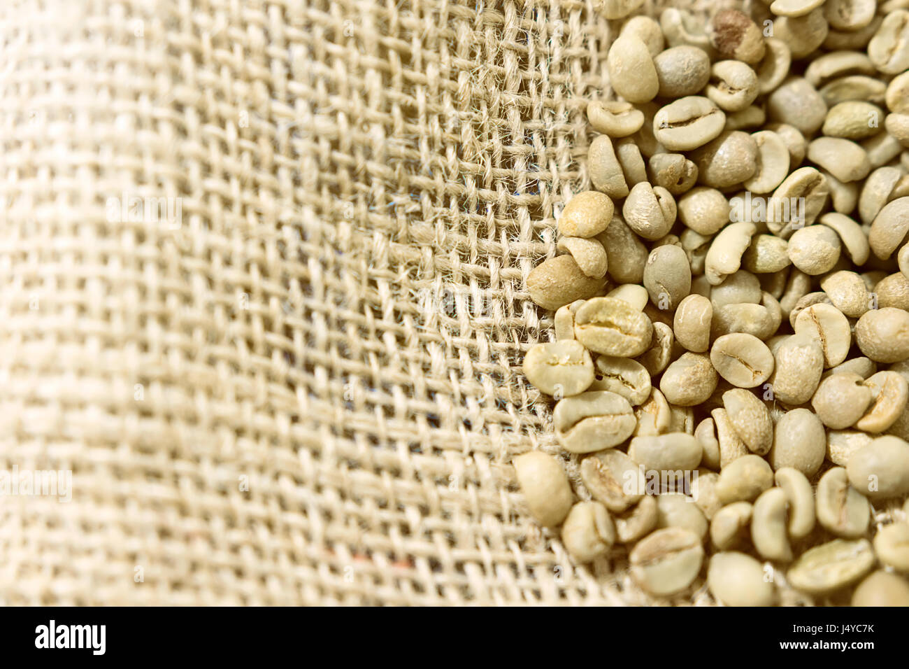 Green unroasted Coffee Beans in a sack. - Stock Image