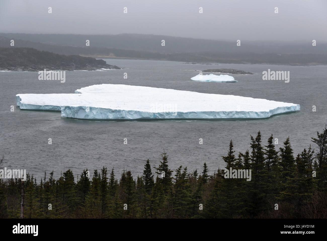 Large berg grounded in Saint Anthony Bight, St. Anthony, Newfoundland - Stock Image