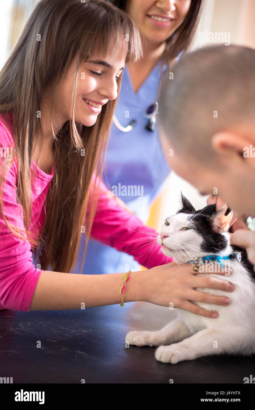 Lovely  girl calm down her sick cat in veterinary clinic - Stock Image