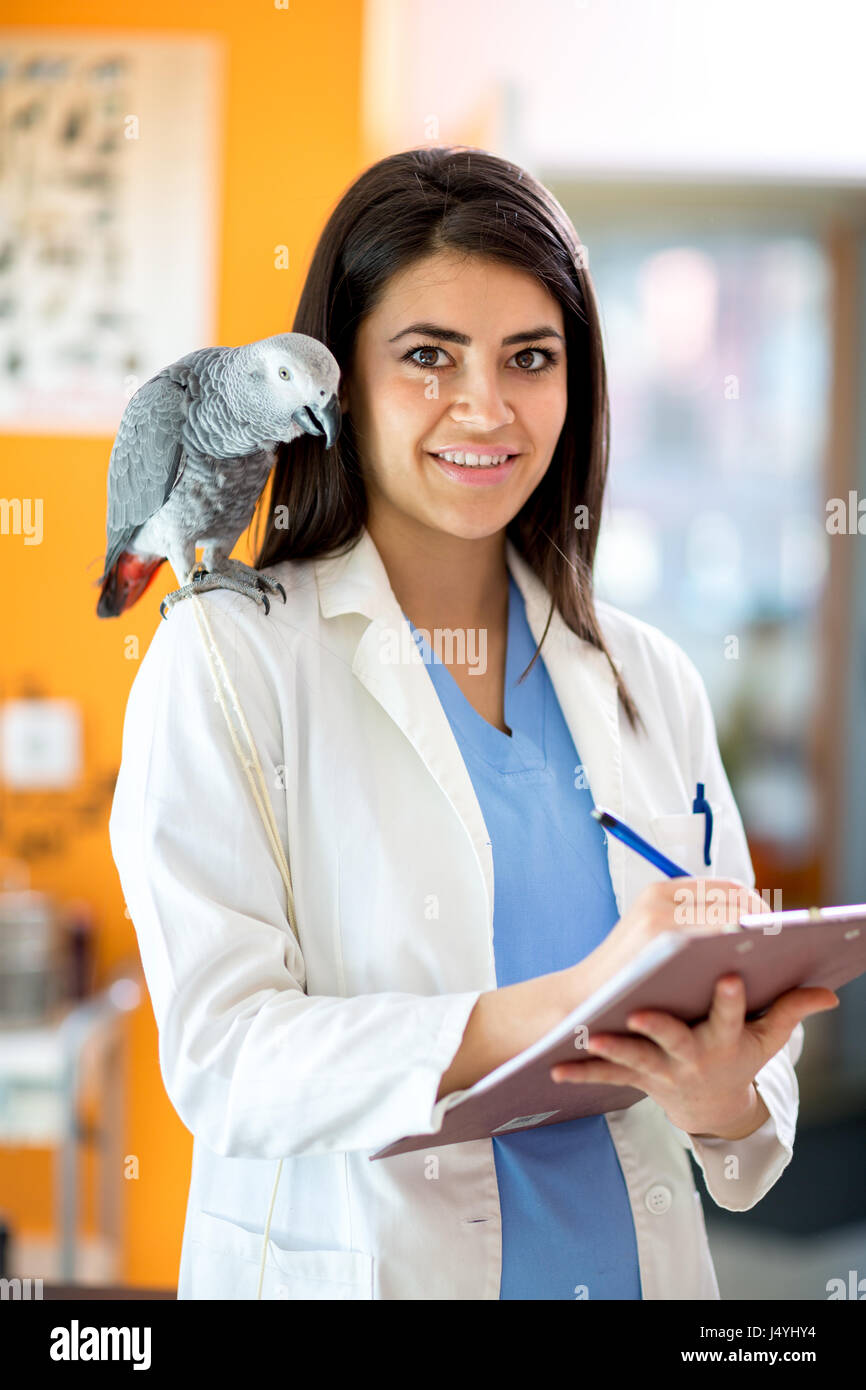 Portrait of young beautiful veterinarian at clinic - Stock Image