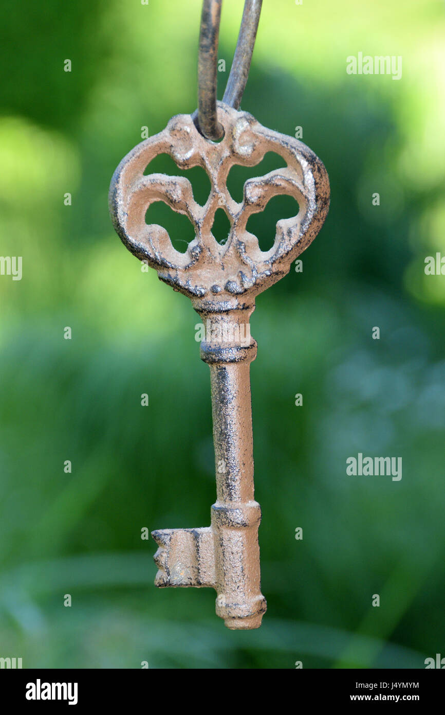 Ancient key on green background. - Stock Image