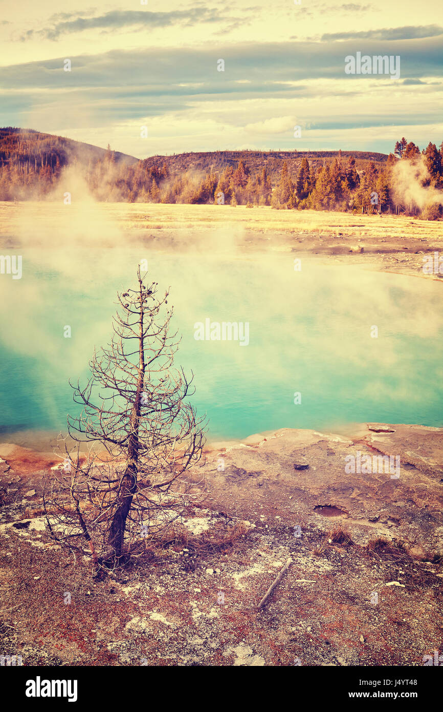 Hot spring in Yellowstone National Park, color toning applied, Wyoming, USA. - Stock Image
