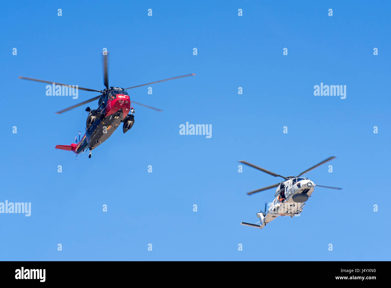 Westland Sea King MK48 SAR and NH90-NFH Caiman NATO Frigate Helicopter of the Belgian Navy in flight during coastal - Stock Image