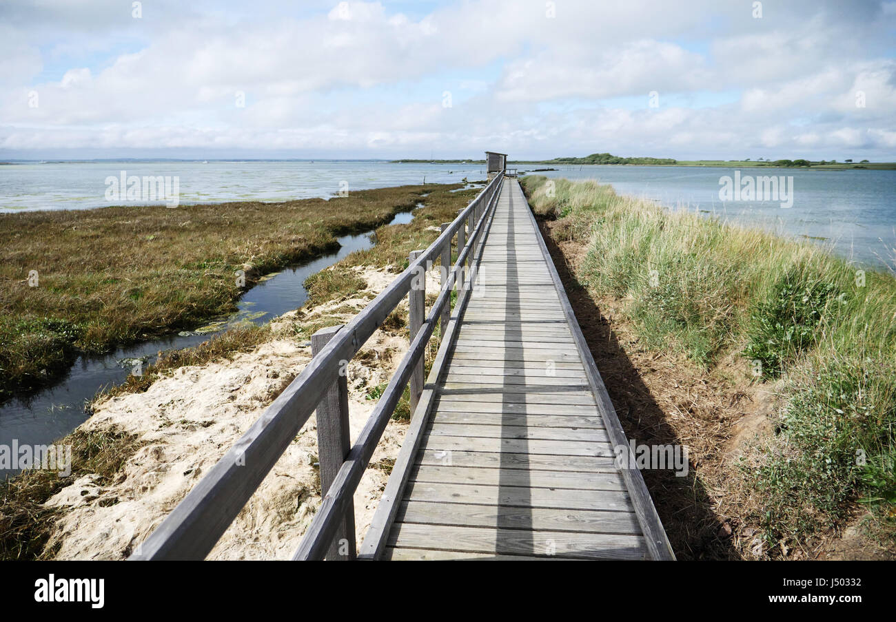 Newtown Harbour National Nature Reserve Isle Of Wight England. Boardwalk leading to the bird hide Stock Photo