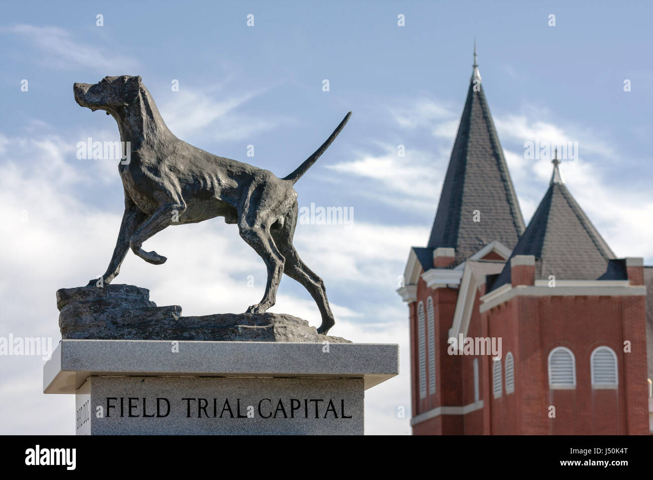 Alabama, AL, South, Bullock County, Union Springs, Prairie Street, Field Trial Capital of the World, bird dog, Bird Stock Photo