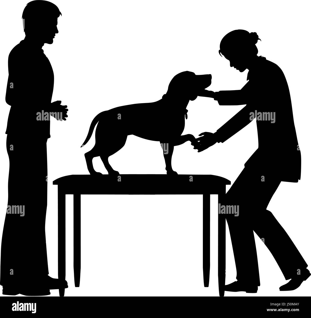 Editable vector silhouette of a female vet examining a pet dog with figures as separate objects - Stock Image