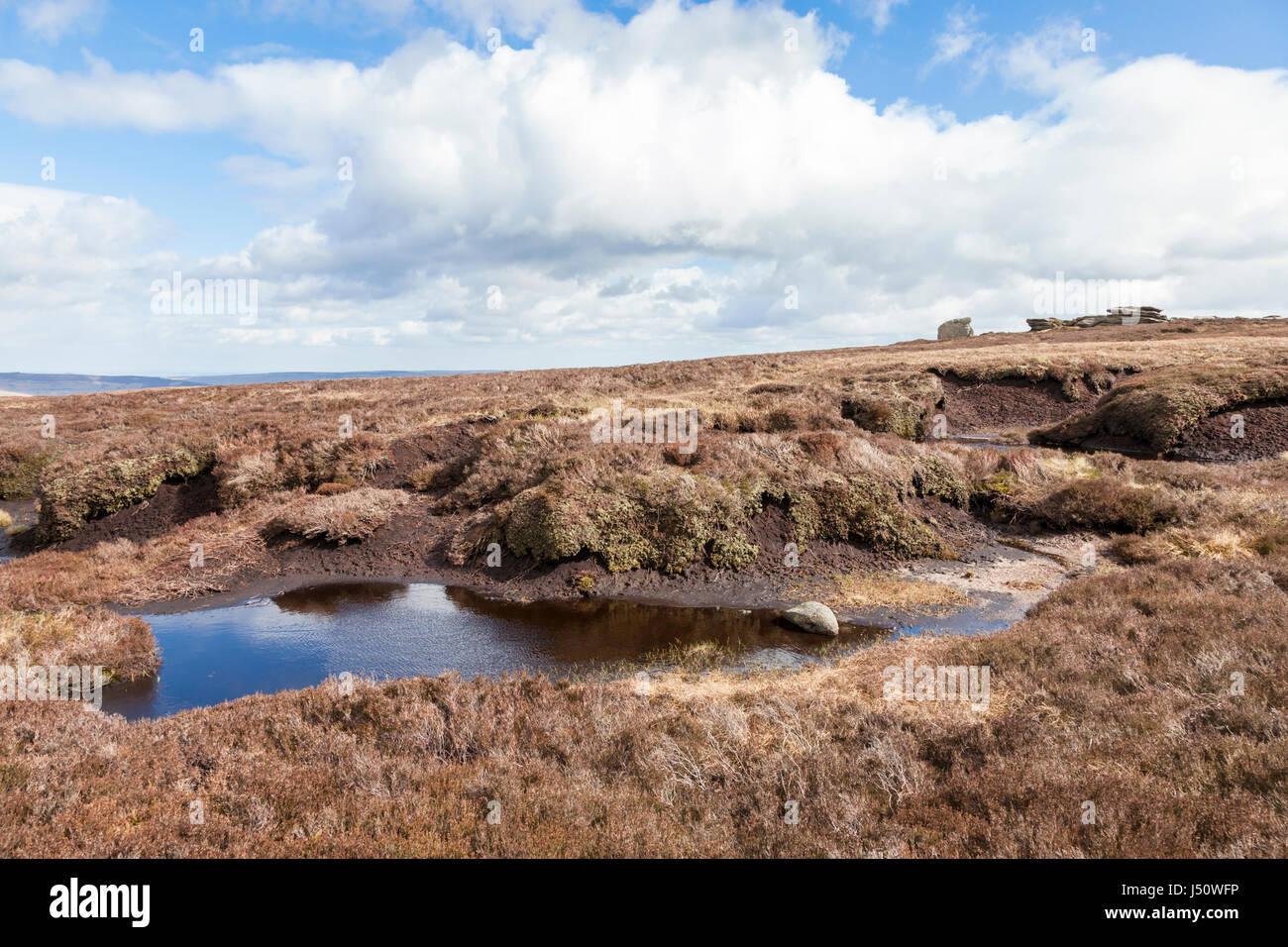 Moorland peat bog near Madwoman's Stones on Kinder Scout, Derbyshire, Peak District National Park, England, - Stock Image