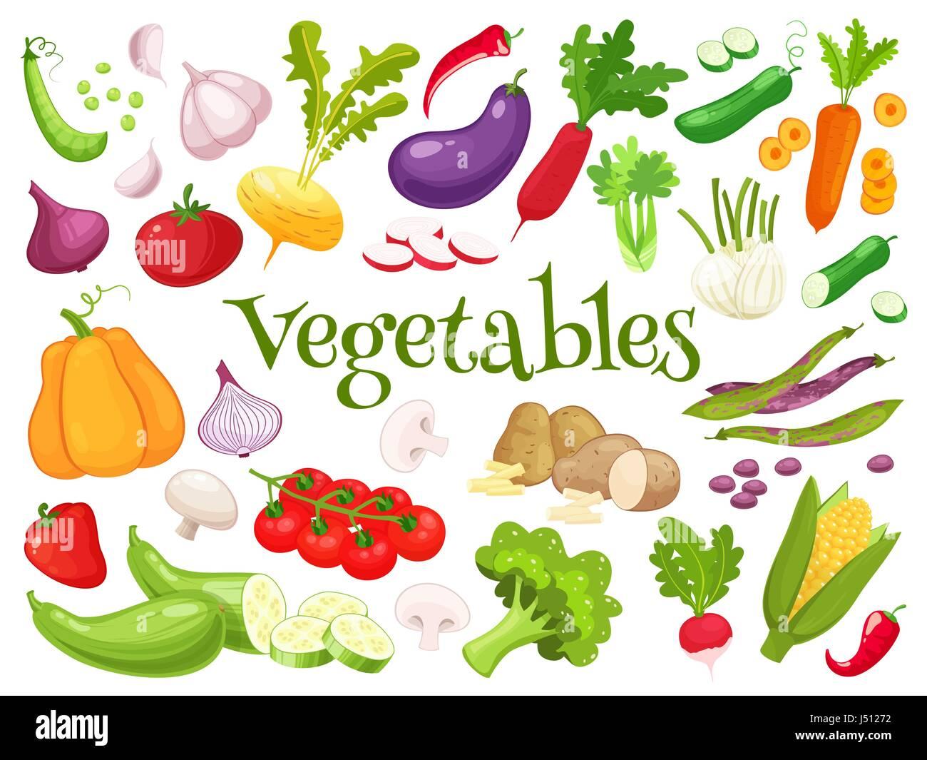 Set of fresh vegetables for your design - Stock Vector