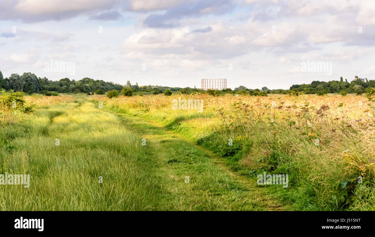 A disused gasometer rises above trees and scrubland in Wormwood Scrubs park on Old Oak Common in Acton, west London. - Stock Image