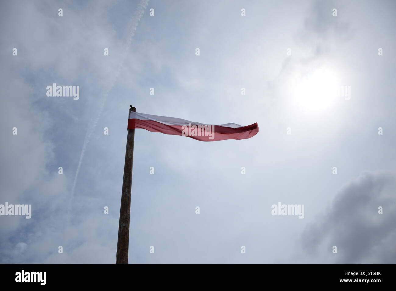 Polish flag flying on flagpole in the cloudy sky - Stock Image