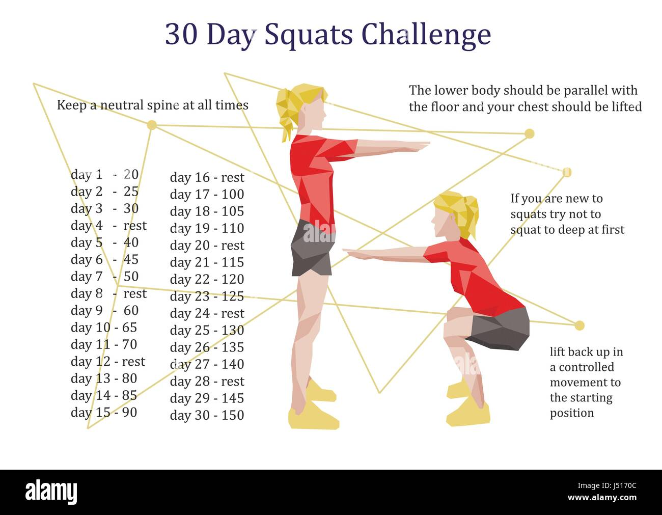 30 days squats challenge infographic Stock Vector Art