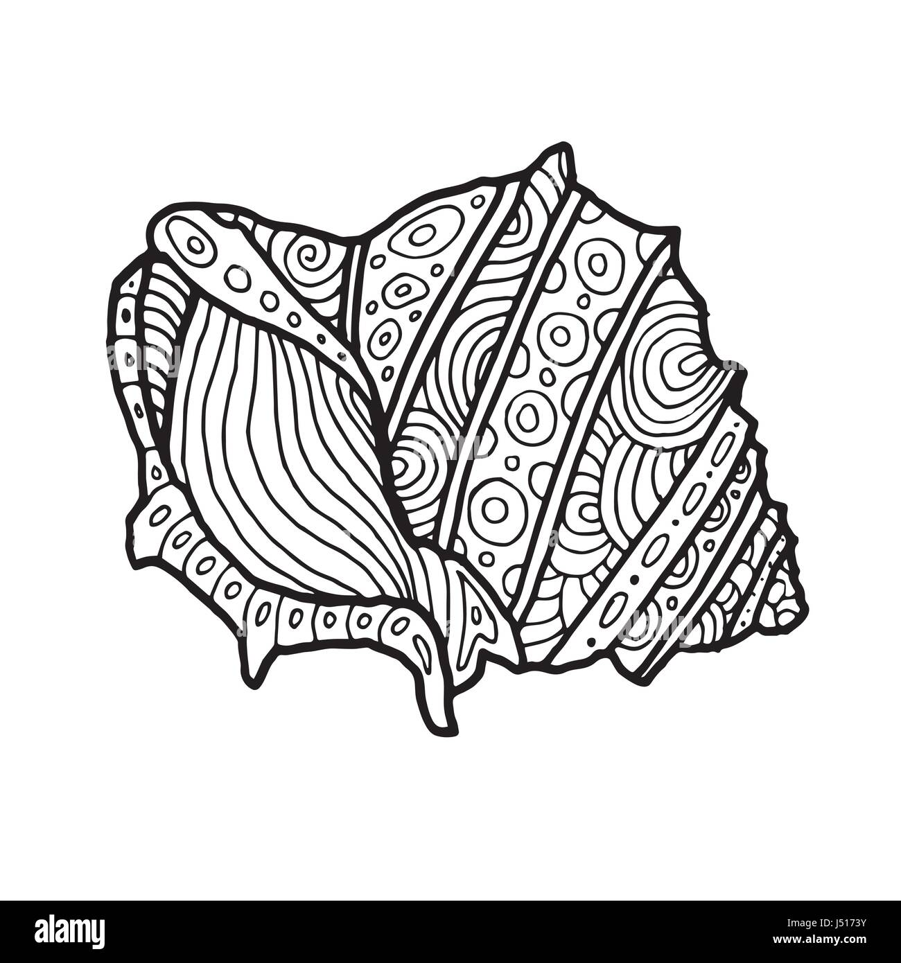 Decorative Zentangle Sea Shell Illustration Outline Drawing Coloring Book For Adult And Children Page Vector Printable Typography Pos