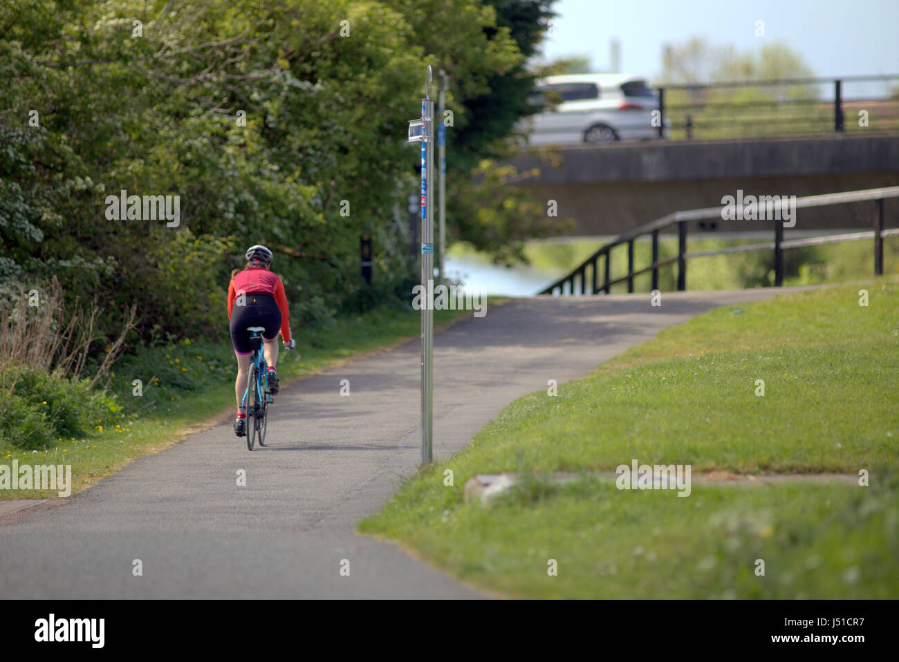 Forth and Clyde canal tow path single lady cyclist Stock Photo