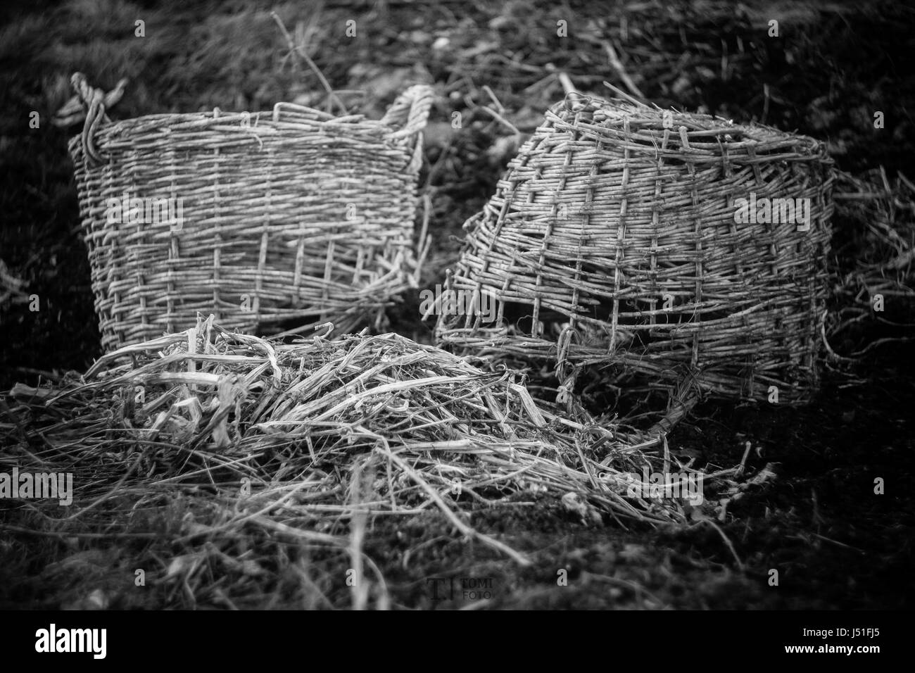 Old black and white basket - Stock Image
